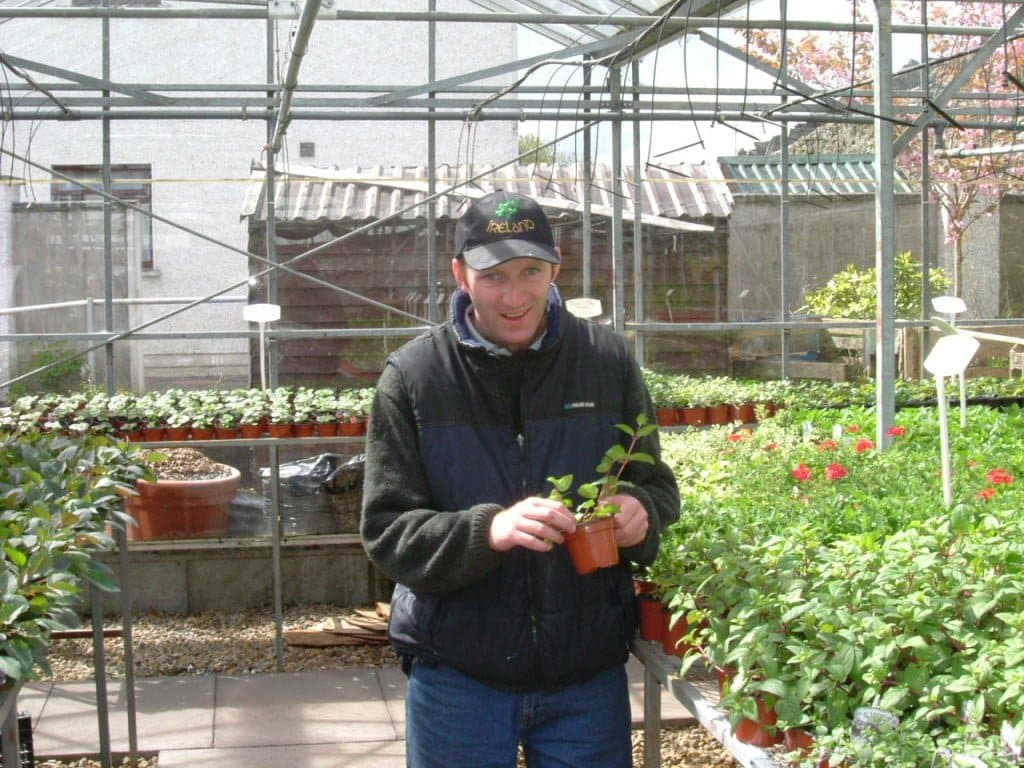 participants have learned the horticultural skills required to assist within this enterprise